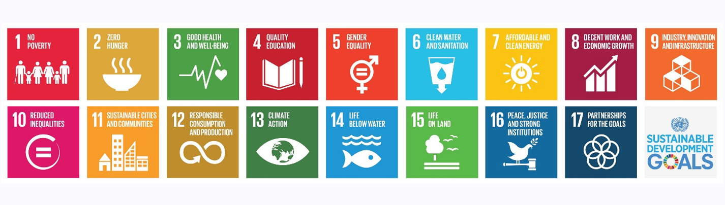 How to align a portfolio with the UN Sustainable Development Goals