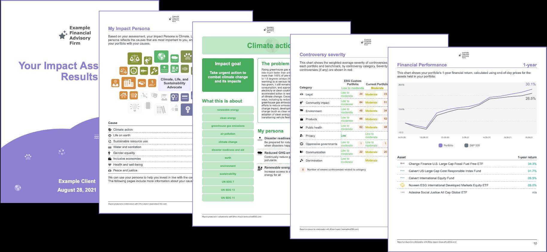 Impact Report - Assessment